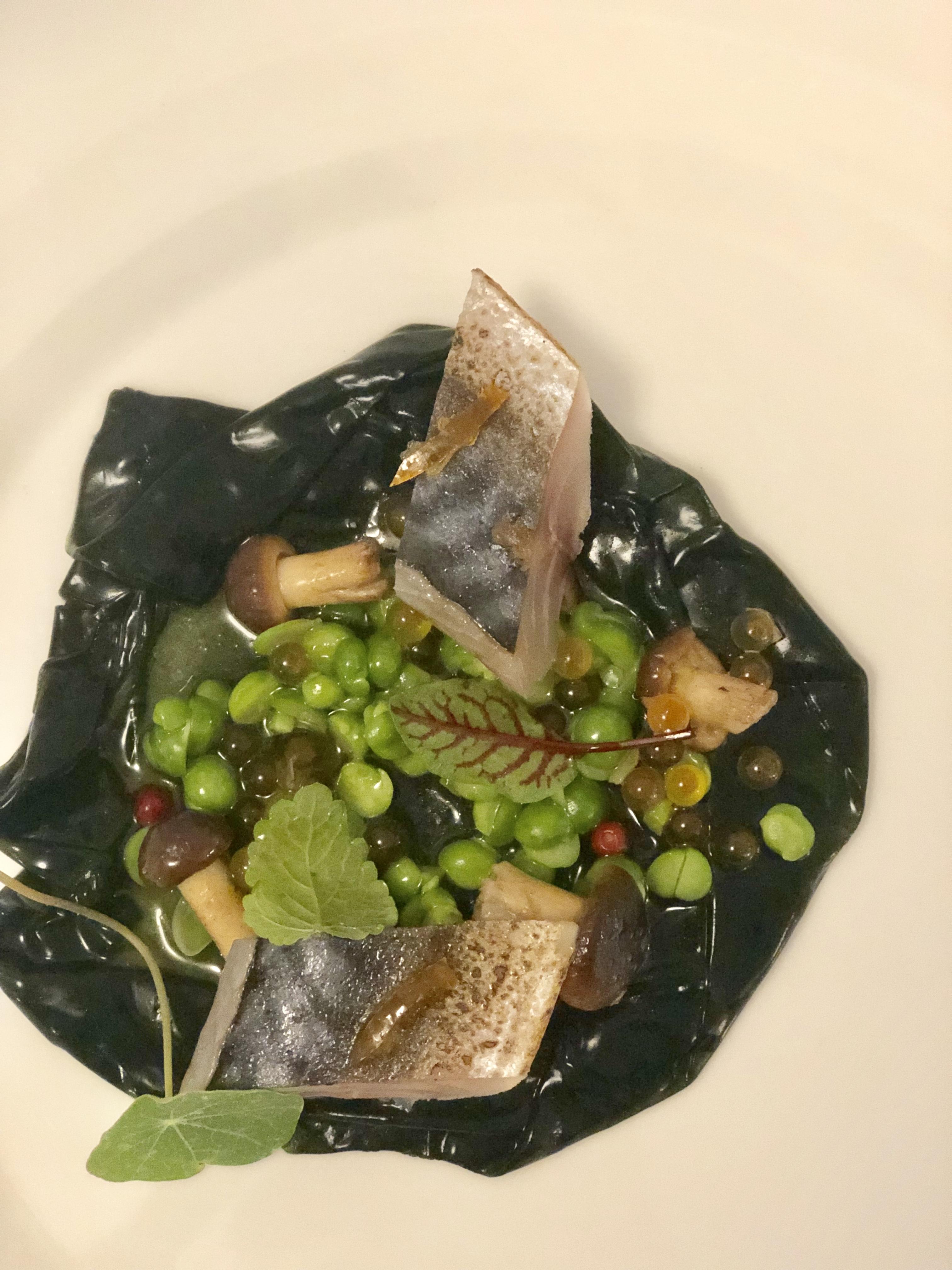 fish & chef 3